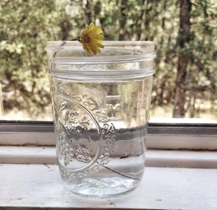 Child of the Jar