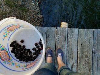 4thofJulyBlackberries