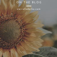 Summer on the Blog